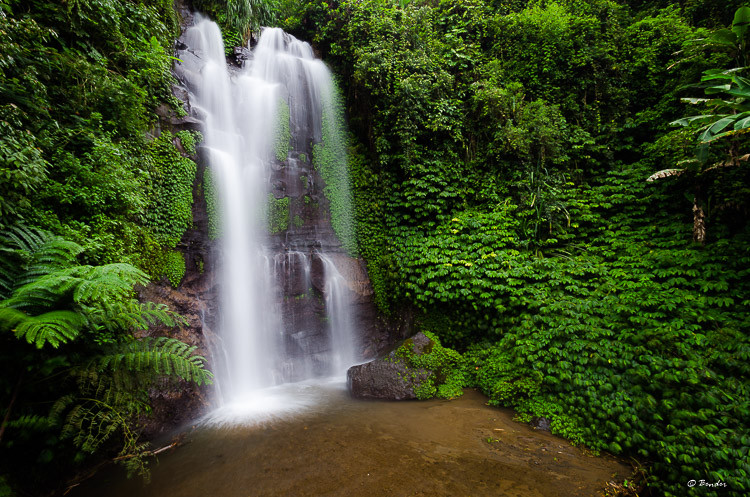 Munduk Falls - jungle trekking rewards at their best!