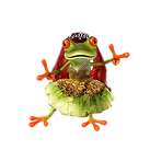 frog fairy.png