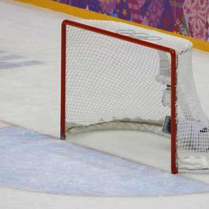 Pulling the Goalie                           Hockey and Business Implications