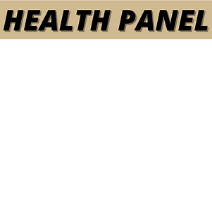 CYBER PANEL (2).png