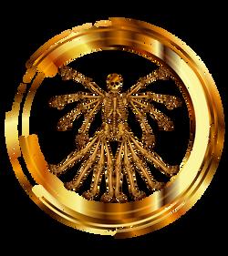 EVO logo - graphic only