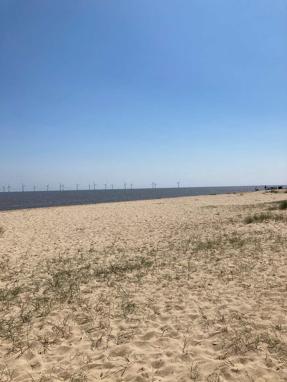 Beach with wind farm in background.