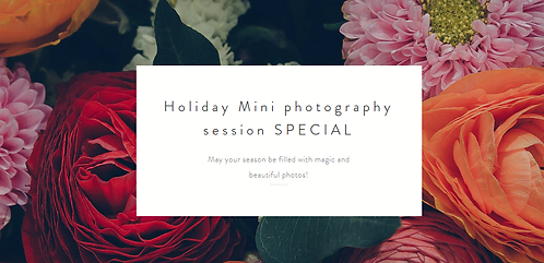 Holiday Mini Photography session
