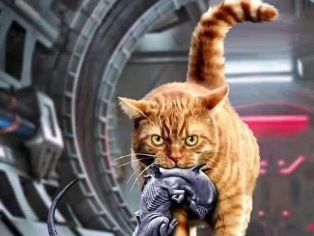 The real cats of science fiction!