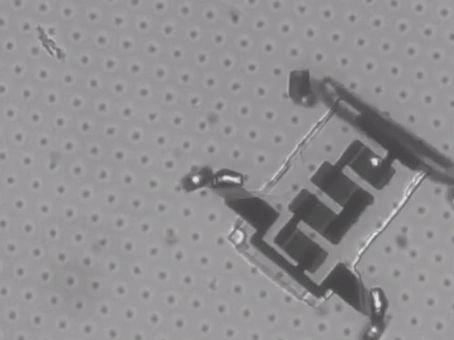 The Nanobots are here...