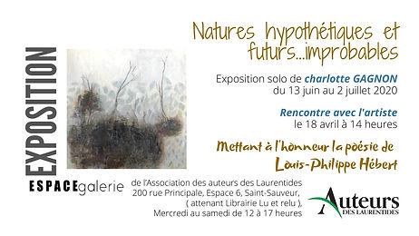 Nature_hypothétique_et_futur_improbable