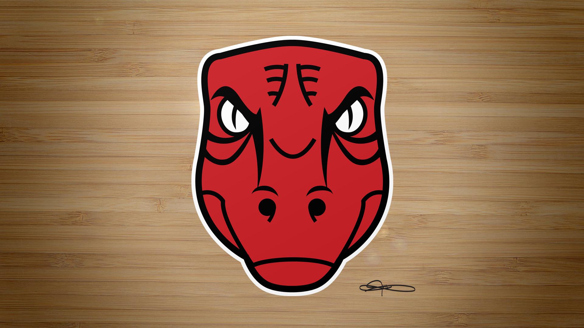 Raptors X Bulls