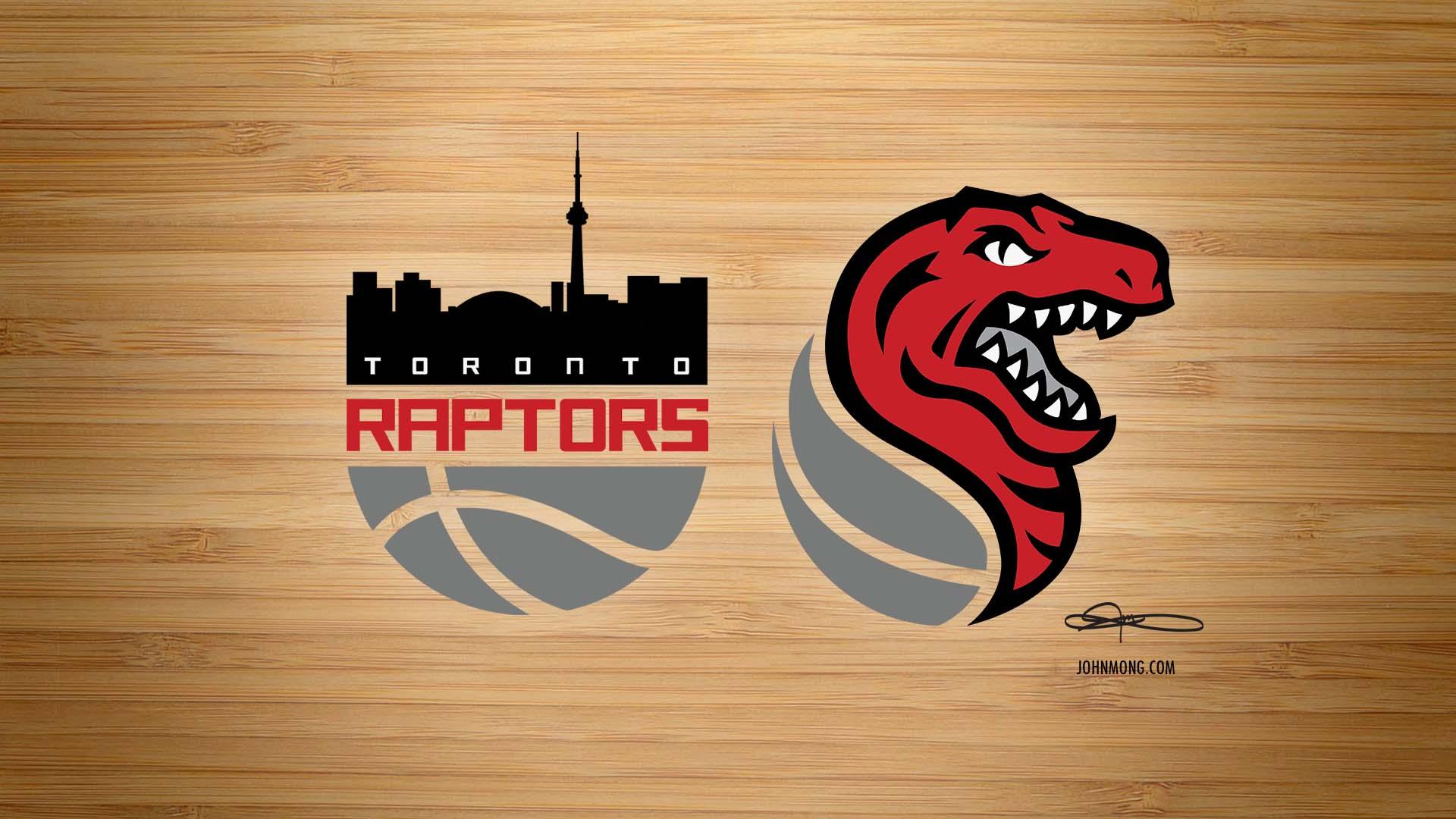 Raptors  X Kings (2017 update)