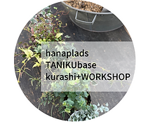 hanaplads TANIKUbase.png