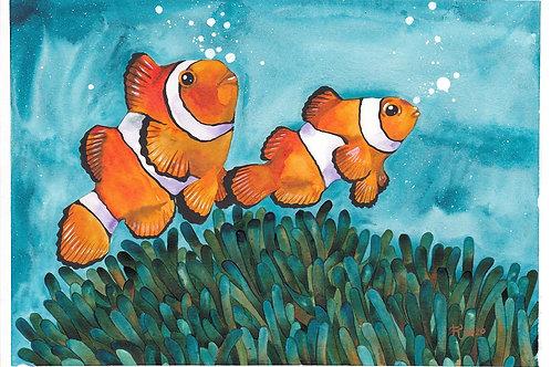Clown Fish 3