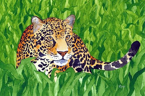 Jungle Cat 5 (Original Artwork)