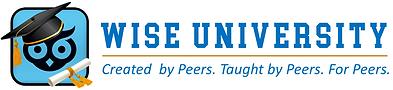 WISE University peer.png