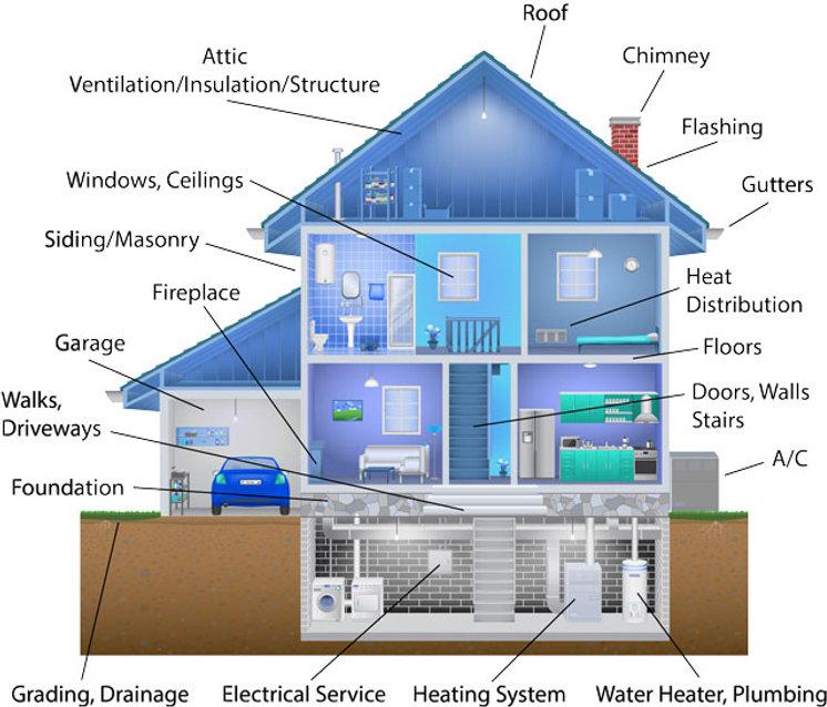 House-illustration.jpg