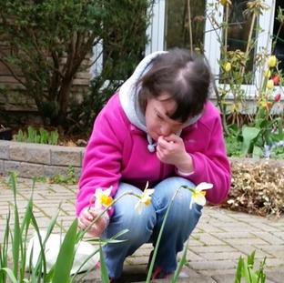 Rebecca Admires the Daffodils and Wild Trilliums