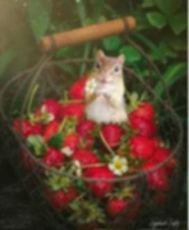 June brings up strawberries! So juicy!.J