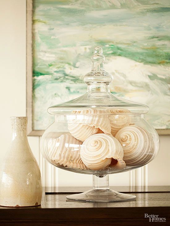 shells display in glass bowl