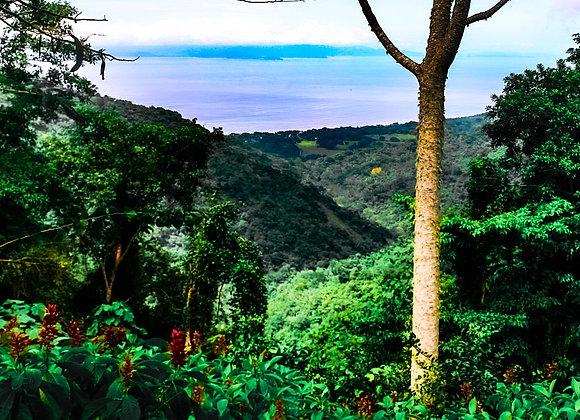 Pacific Coast in Costa Rica 2