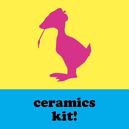 Champaign Park District - Ceramics Kit!