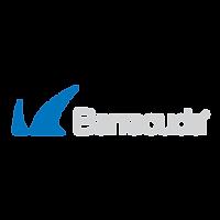 MCIT-Company-barracuda.png