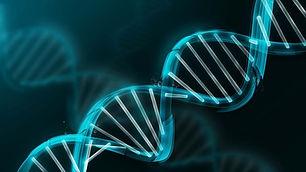 genetica.jpg