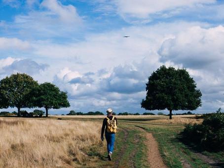 Walking and Weight-loss