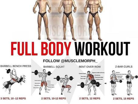 Full Body v.s Isolating Muscle Groups