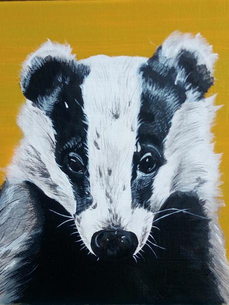 Badger £60