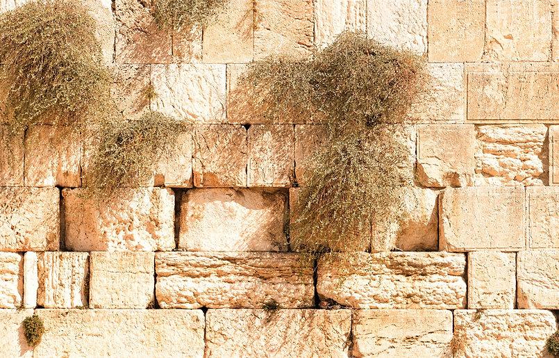 jerusalem-1328645_1920_edited.jpg
