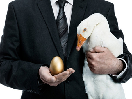 Feeding The Golden Goose