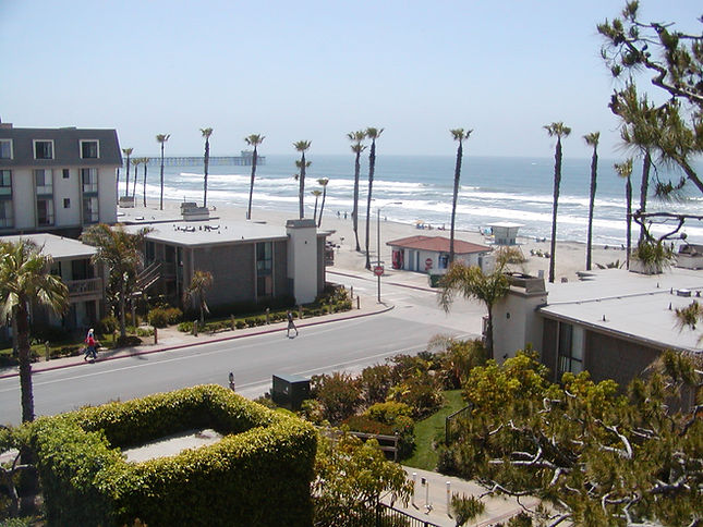 Oceanside beach with palm trees and crashing waves