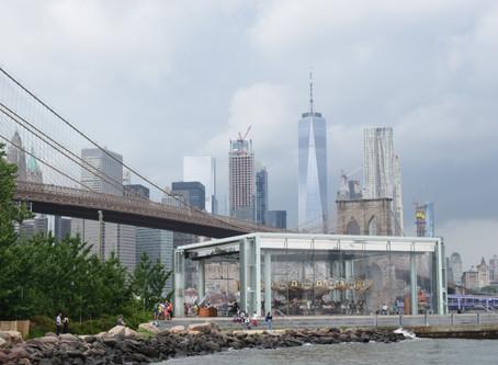 Zie the Big Apple eens anders - Hotspots New York City, USA