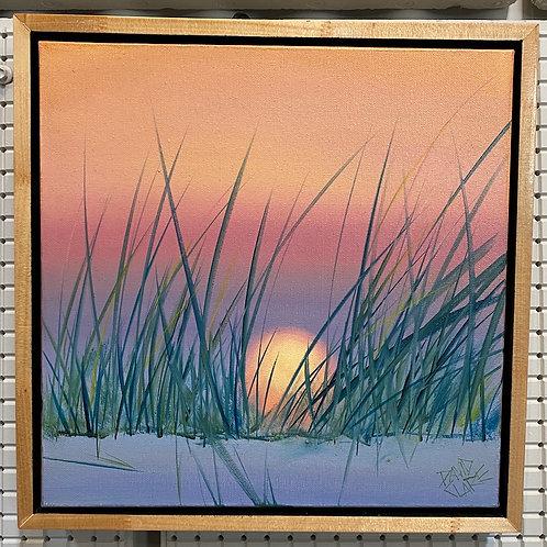 David Clare - 'Summer Dreaming'