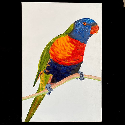 Roslyn Howse - 'Pretty Parrot'