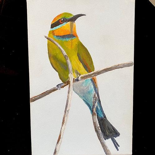 Roslyn Howse - 'Rainbow Bee-Eater'
