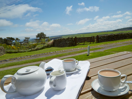 Tea withh a view