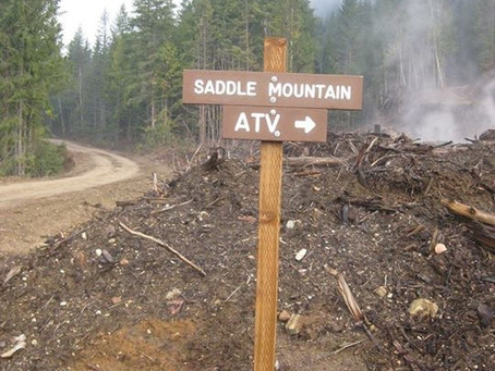 Arrow Lakes ATV Club hard at work on Saddle Mountain Trail with trail brushing, new culvert installe
