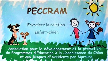 PECCRAM (2).JPG