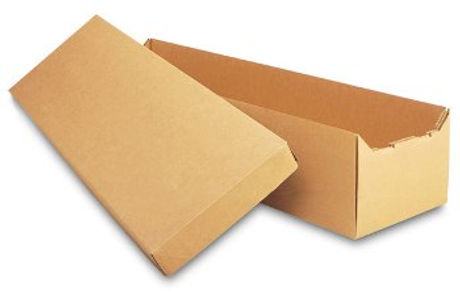 Alternative Cardboard Container.jpg