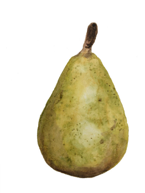 Stanthorpe pear