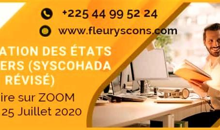 APPRENDRE A ÉLABORER LES ETATS FINANCIERS - SYSCOHADA REVISE - AVEC LES MEILLEURES OPTIONS FISCALES