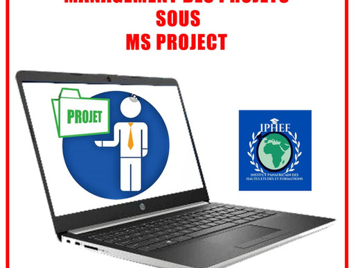 CERTIFICAT PROFESSIONNEL MS PROJECT