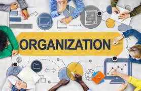 FORMATION A DISTANCE EN MANAGEMENT ORGANISATIONNEL - FORMATION MASSIVE OUVERTE A DISTANCE