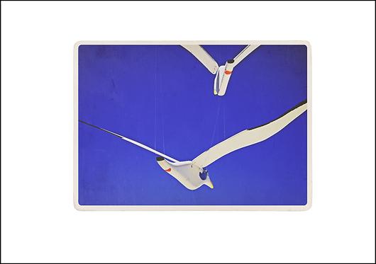 Toy Seagulls - A3 Fine Art Print