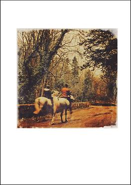 Horses on the Lakes Rd - A3 Fine Art Print