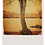 Thumbnail: Marple Walks Collection - The Roman Lakes