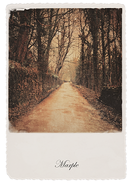 Marple Walks Collection - The Lakes Road