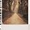 Thumbnail: Marple Walks Collection - The Lakes Road