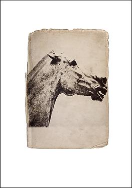Greek Horse Sculpture - A3 Fine Art Print