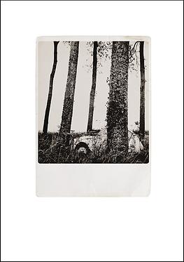 2CV - A3 Fine Art Print