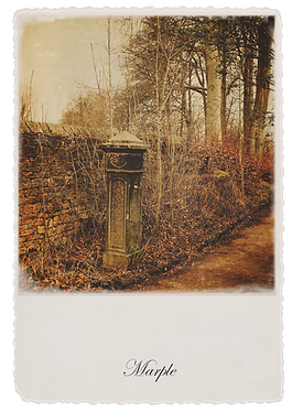 Marple Walks Collection - Pathway to Brabyns Park